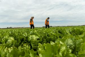 OUR FARMING REGIONS